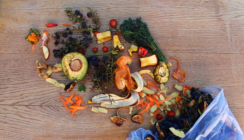 L'innovation, levier de réduction du gaspillage alimentaire