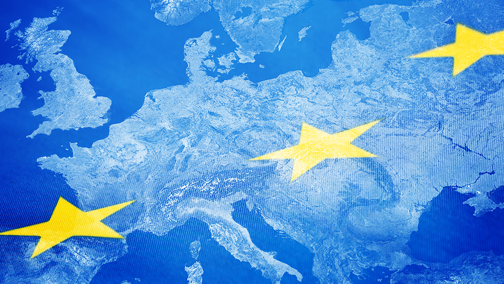 Elections européennes 2019 : résultats en infographie