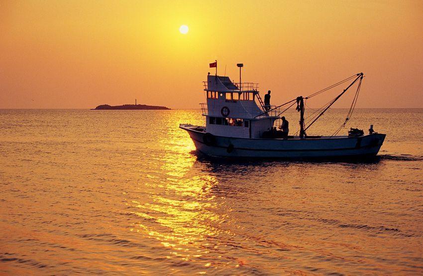 Avenir de la pêche française et européenne après le Brexit